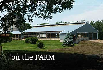 Agricultural Farm Post Frame Metal Buildings NY